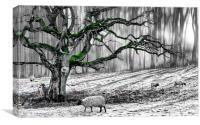 Green Velvet, Canvas Print