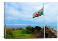 Beautiful Welsh Flag, Canvas Print