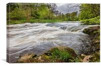 River Don at Woodside, Canvas Print