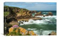 Coastline, NE Scotland, Canvas Print