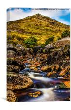 Tavy Cleave, Canvas Print