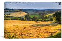 Hay Making , Canvas Print