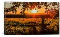 Silhouetted In Red., Canvas Print