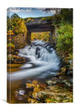 Red-a-ven Brook., Canvas Print