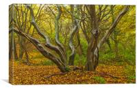 Woodland Sculpture, Canvas Print