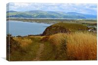 Borth Coastal Walk, Wales., Canvas Print