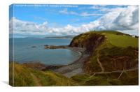 Nature Walk, Borth, Wales., Canvas Print