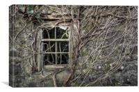 Branching Out, Canvas Print