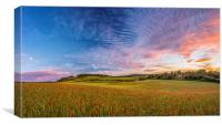 Dramatic Sunset on a Poppy Field in Kent, Canvas Print