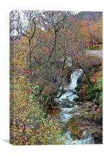 Waterfall in Scotland, Canvas Print