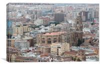 Malaga Cathedral, Canvas Print