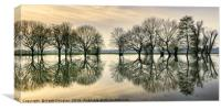 Reflections in the Flood, Canvas Print