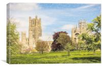 Ely Cathedral - from the South, Canvas Print