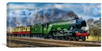 Steaming to the North, Canvas Print