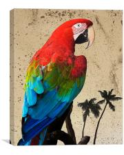 Parrot and Palms, Canvas Print