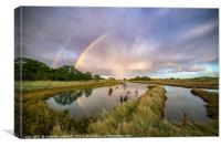 Swallows, Rainbows and Reflections, Canvas Print