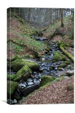 Winding Stream in Cumbria, Canvas Print