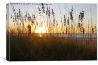 Morning in all its Glory, Canvas Print