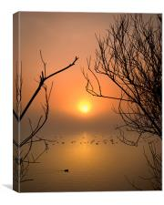 Cosmeston Lake with mist, Canvas Print
