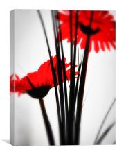 Red Flower 1, Canvas Print