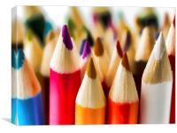 Colouring Pencils 3 , Canvas Print
