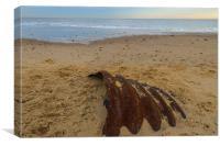 Hemsby Beach Scrap Metal, Canvas Print