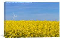 Wind Turbine in field of yellow, Canvas Print