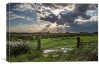 Sun Rays at Somerton, Canvas Print