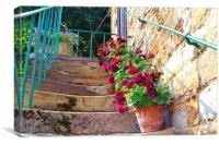Worn steps and flowerpots, Canvas Print