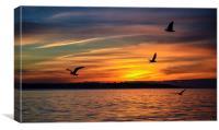 moody sunset, Canvas Print