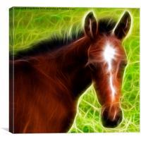 Fractal Foal, Canvas Print