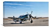 P-47D Thunderbolt, Canvas Print