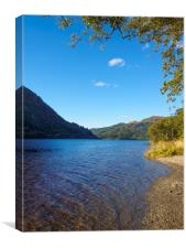 The banks of Loch Lubnaig, Canvas Print