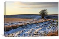 Winter fields, Canvas Print