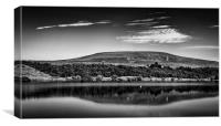 Reflections of Brown Wardle, Canvas Print