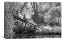 Autumn in Monochrome, Canvas Print