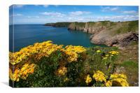 Pembrokeshire coast line, Canvas Print
