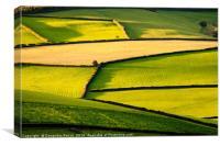 Exmoor Greens, Canvas Print