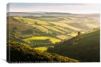 Exmoor Green Rolling Hills, Canvas Print