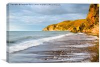 Lynmouth beach, Canvas Print