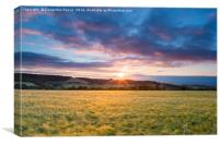 Crop field sunset, Canvas Print