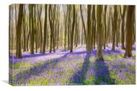 Bluebells phantasia, Canvas Print
