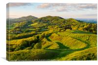 The Malvern hills at the evening golden hour, Canvas Print