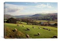 Swaledale, near Reeth, North Yorkshire, Canvas Print