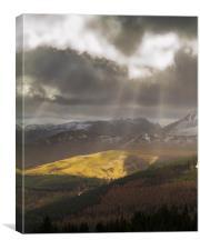 sunshine colour spot, Canvas Print