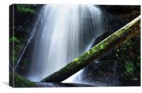 Fairlie waterfalls, Canvas Print