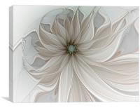 Petal Soft, Canvas Print