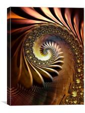 Bronze Coil, Canvas Print