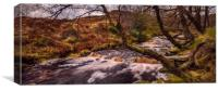 Black Clough Autumn, Canvas Print