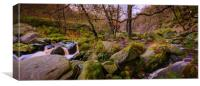 Woodland Stream panoramic, Canvas Print